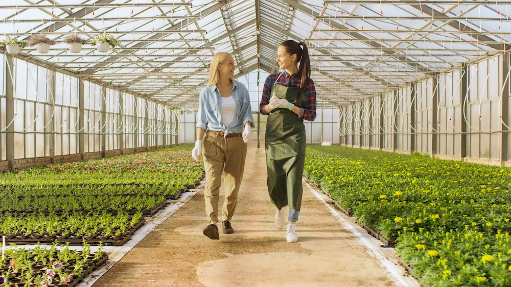 Two female gardeners walking through the greenhouse where they work.